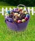 Gagnez des lots de chocolats Jeff De Bruges