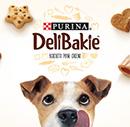 échantillons tests de biscuits Purina