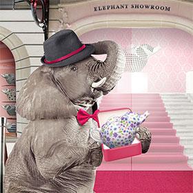 Instants Gagnants Éléphant : 1000 théières offertes