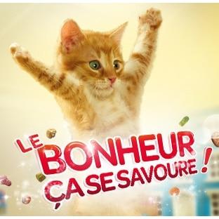 Friskies chat 100% remboursé : Sac de croquettes offert