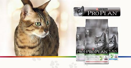 Recevez gratuitement des croquettes Pro Plan pour chat