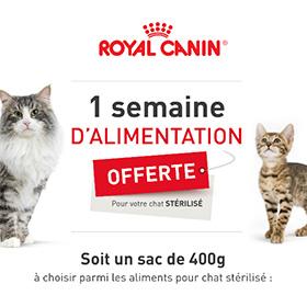 Croquettes Royal Canin gratuites : 1 sac pour chat offert