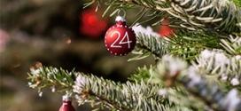 Sapin IKEA Noël 2017 pas cher (24.99€ – 20€ en carte cadeau)