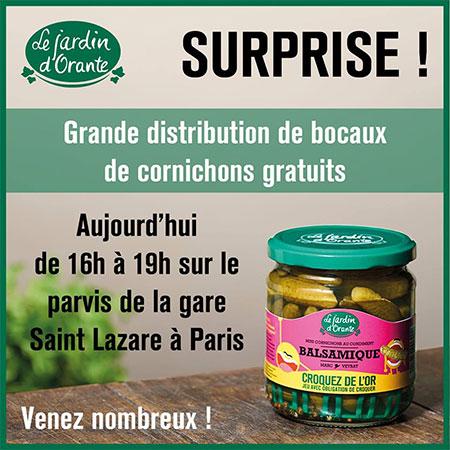 Mini Cornichons Balsamique gratuits offerts par Le jardin d'Orante