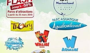 Vente Flash Carrefour Spectacle : Billets parcs moins chers