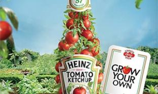 Paquets de graines de tomates Heinz gratuits