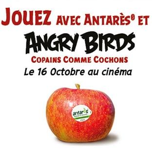 Jeu Angry Birds avec Antarès : 401 cadeaux à gagner