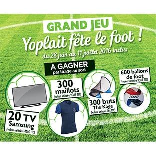 Jeu Yoplait Fête le foot avec Carrefour : 1220 cadeaux à gagner
