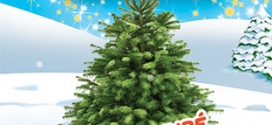 Kinder : 3 calendriers de l'Avent achetés = 1 sapin de Noël gratuit