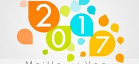EchantillonsClub vous présente ses meilleurs vœux pour 2017