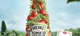 Graines de tomates Heinz : 10'000 paquets gratuits