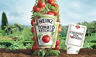 Graines de tomates Heinz gratuites : 10'000 paquets offerts
