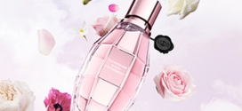 Échantillons du parfum Flowerbomb Bloom de Viktor&Rolf