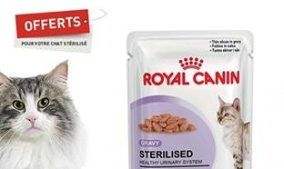 échantillons gratuits de Nourriture Royal Canin