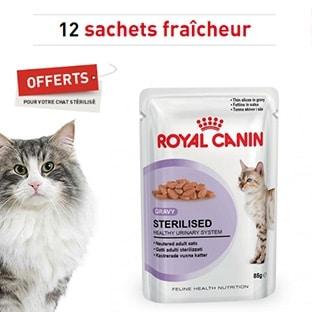 Nourriture Royal Canin gratuite : 12 sachets pour chat offerts