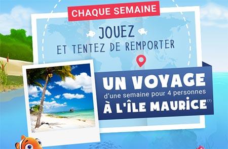 Jeu code Jeu Carrefour.fr/ocean-buddies