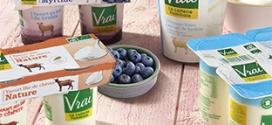 Test Vrai : 1000 lots de yaourts Bio au lait de brebis gratuits