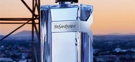 Échantillon gratuit du parfum masculin Y d'Yves Saint Laurent
