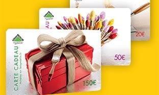 Jeu La Poste : 248 cartes Leroy Merlin et 1 chèque de 1500€
