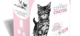 Royal Canin : Coffrets chatons gratuits sur simple demande