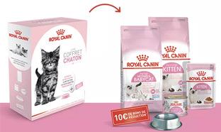 Test Royal Canin : 600 coffrets pour chatons gratuits