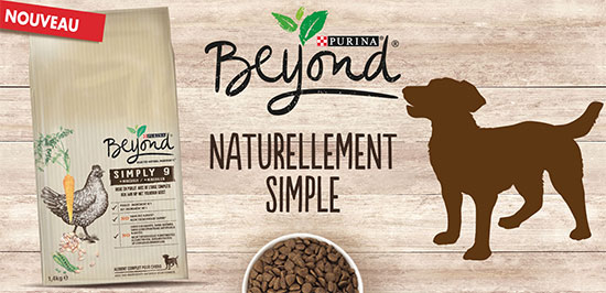 Alimentation pour chiens Beyond à tester gratuitement