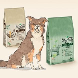 Test de croquettes Beyond pour chiens : 1700 packs gratuits