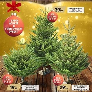 Bon plan Sapin de Noël chez Intermarché : Bon d'achat offert