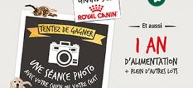 Jeu Royal Canin par Gamm Vert : 2115 cadeaux à gagner