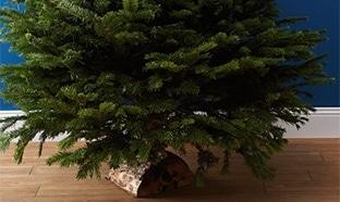 Auchan : 1 sapin de Noël acheté = bon d'achat de 10€ offert