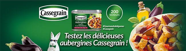 testez les Aubergines Cassegrain avec CVous