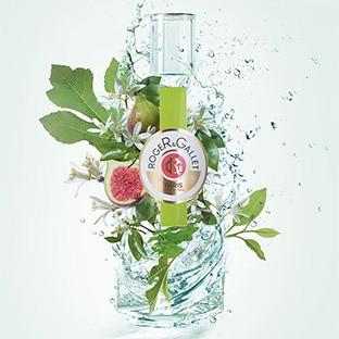 9'900 échantillons du parfum Roger&Gallet Feuille de Figuier