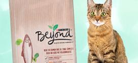 Test gratuit de croquettes pour chats Beyond