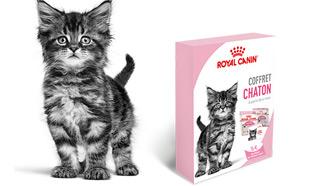 Royal Canin : Coffret chaton gratuit sur simple demande