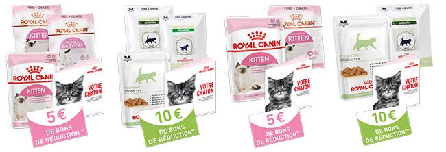 Les différents kits gratuits pour chatons