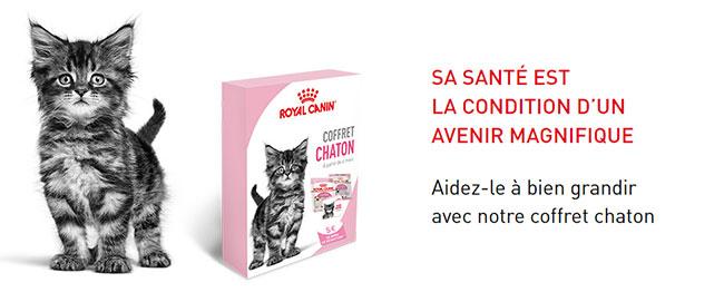 Les coffrets Royal Canin offerts sur Wikichat.fr