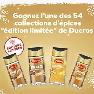 Jeu Ducros : épices Éditions Limitées Noël