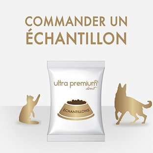 Échantillons gratuits de croquettes Ultra Premium Direct