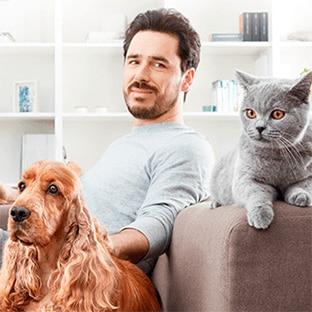 Test Advance : 8000 packs d'aliments pour chat ou chien gratuits