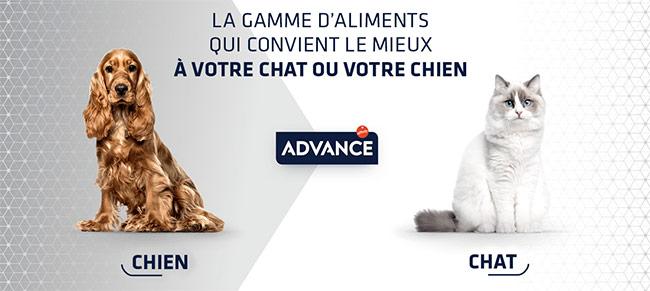 testez gratuitement les croquettes pour chat ou chien Advance
