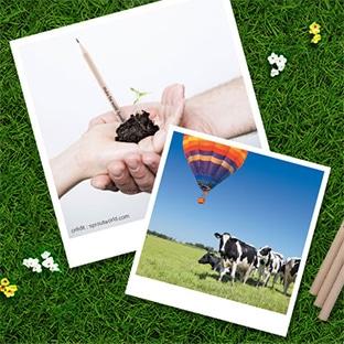 Ribambel : Crayons à planter offerts et séjours à gagner