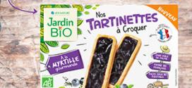 test tartinettes a croquer myrtille jardin bio