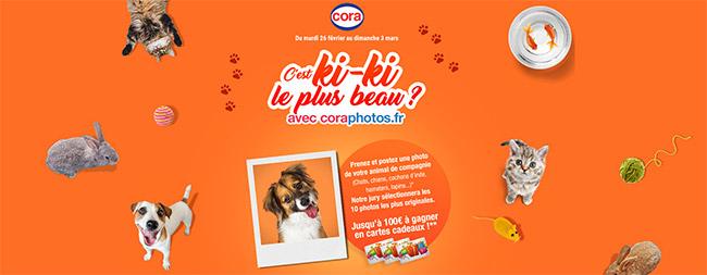 Tentez de gagner une carte cadeau Cora avec la photo de votre animal