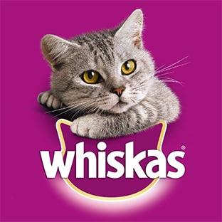 Jeu Whiskas.fr avec achat : 300'001 cadeaux à gagner