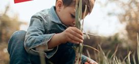 échange de pesticides contre des pommes bio offertes chez Botanic