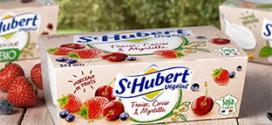 test gratuit de desserts végétaux St Hubert Végétal