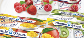 test gratuit des desserts Mamie Nova avec Sampleo