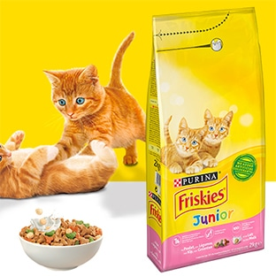 Échantillons gratuits de croquettes Friskies Junior