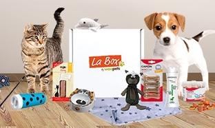 Jeu Woopets : 25 box chien et 25 box chat à gagner