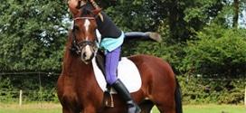 Tous à cheval FFE 2020